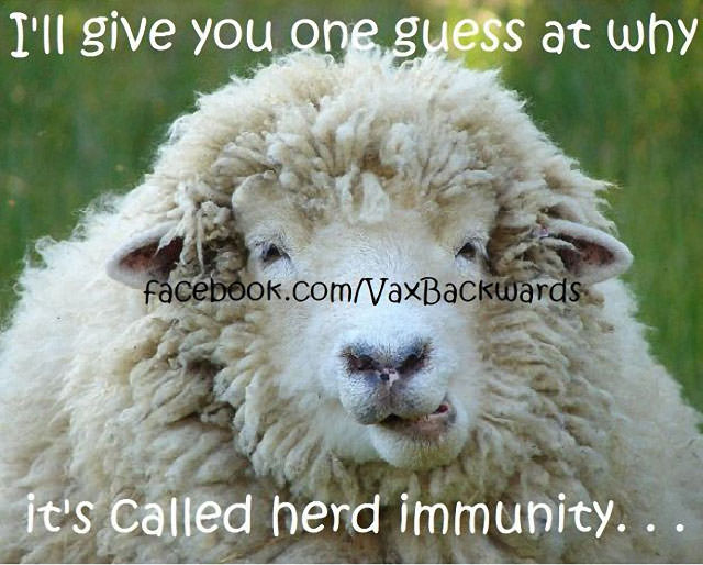 The Myth Of Vaccine-Induced Herd Immunity 2